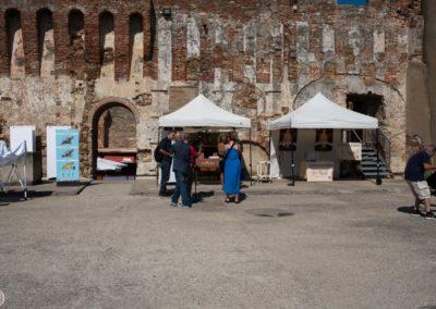 Modigliani Livorno 2017-33 (Custom)